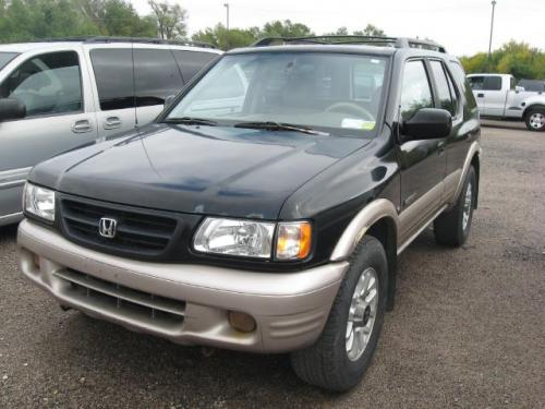 Photo Image Gallery: Honda Passport in Ebony Black On Fawn (770)  YEARS: -