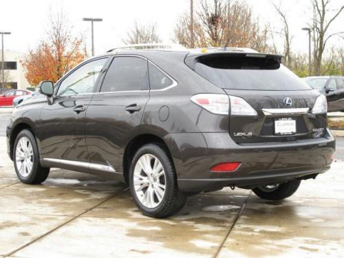 Photo Image Gallery & Touchup Paint: Lexus RX in Truffle Mica   (4T5)  YEARS: 2010-2010