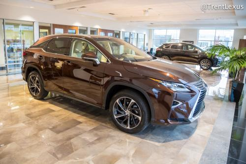 Photo Image Gallery & Touchup Paint: Lexus RX in Autumn Shimmer   (4X2)  YEARS: 2016-2017