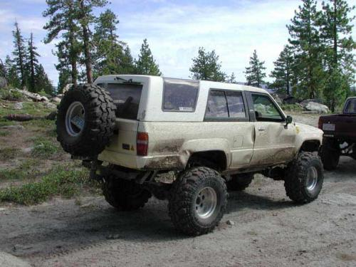 Photo Image Gallery & Touchup Paint: Toyota 4runner in Creme    (557)  YEARS: 1984-1985