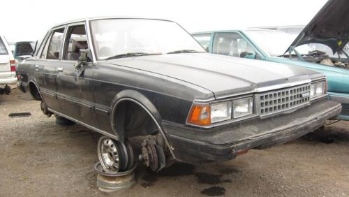 Photo Image Gallery: Toyota Cressida in Silver Gray   (XX1)  YEARS: -