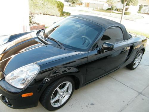 Photo Image Gallery & Touchup Paint: Toyota Mr2 in Black    (202)  YEARS: 2000-2005
